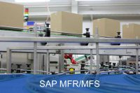 SAP Materialflussrechner