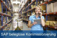SAP beleglose Kommissionoierung