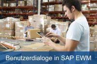 SAP EWM Benutzerdialoge