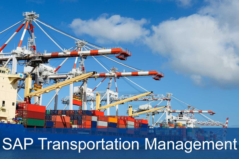 Transportation Management in SAP (SAP TM) - SERKEM